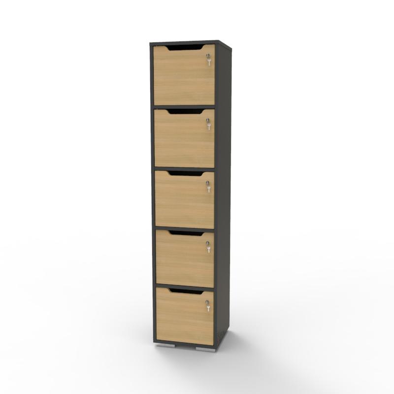 Vestiaire de bureau en bois chêne et graphite doté de 5 cases CASEO avec serrure à clé et d'autres options de serrures