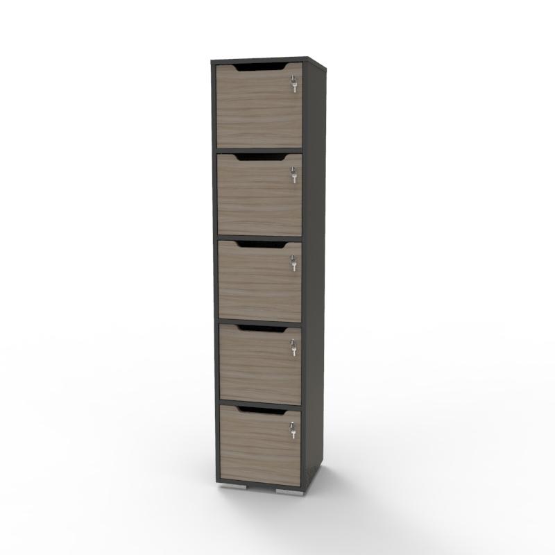 Vestiaire de bureau en bois driftwood CASEO 5 cases pour vestiaire collectif et salle de sport